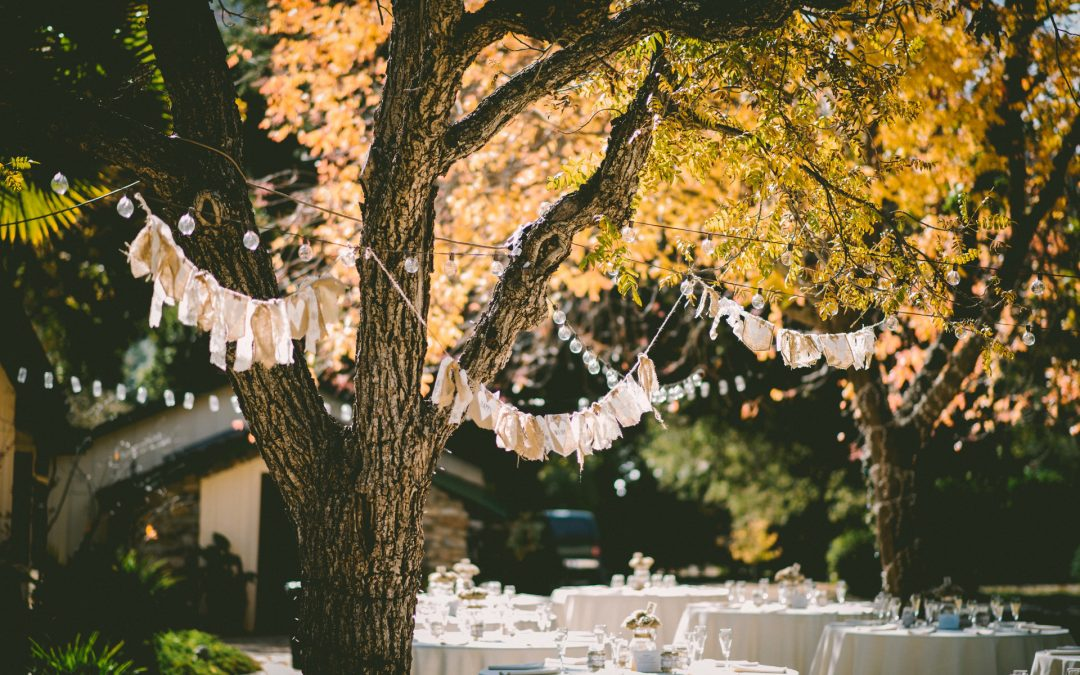 Wedding party bunting flags and tableware