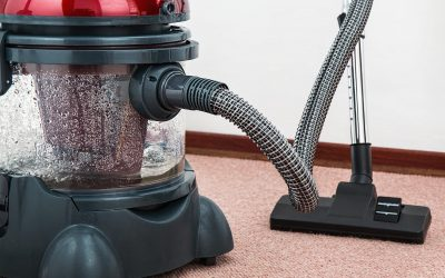 Carpet chores