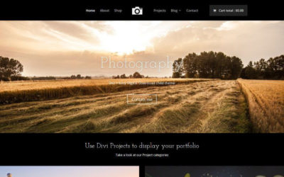 Sell your digital products with Photography child theme & Easy Digital Downloads