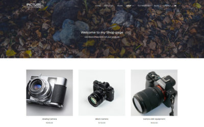 Picture Free Divi Child Theme v2.0 update, display your Portfolio and Sell products