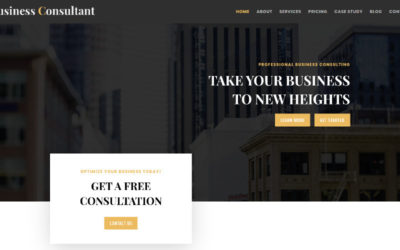 This Business Consultant Divi Child Theme is just what a consultant needs to market their services online