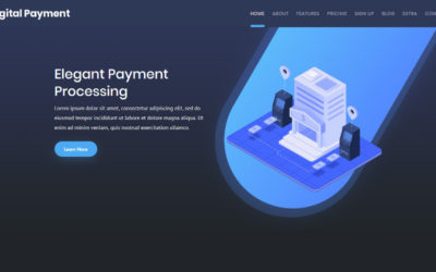 Start your own online Digital Payment company with this dark toned Divi child theme