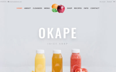 Juice Shop a Divi Child Theme with a wonderful combination of vibrant colors and crisp images