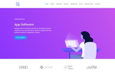 This Software Marketing child theme allows you to build a marketing website from scratch